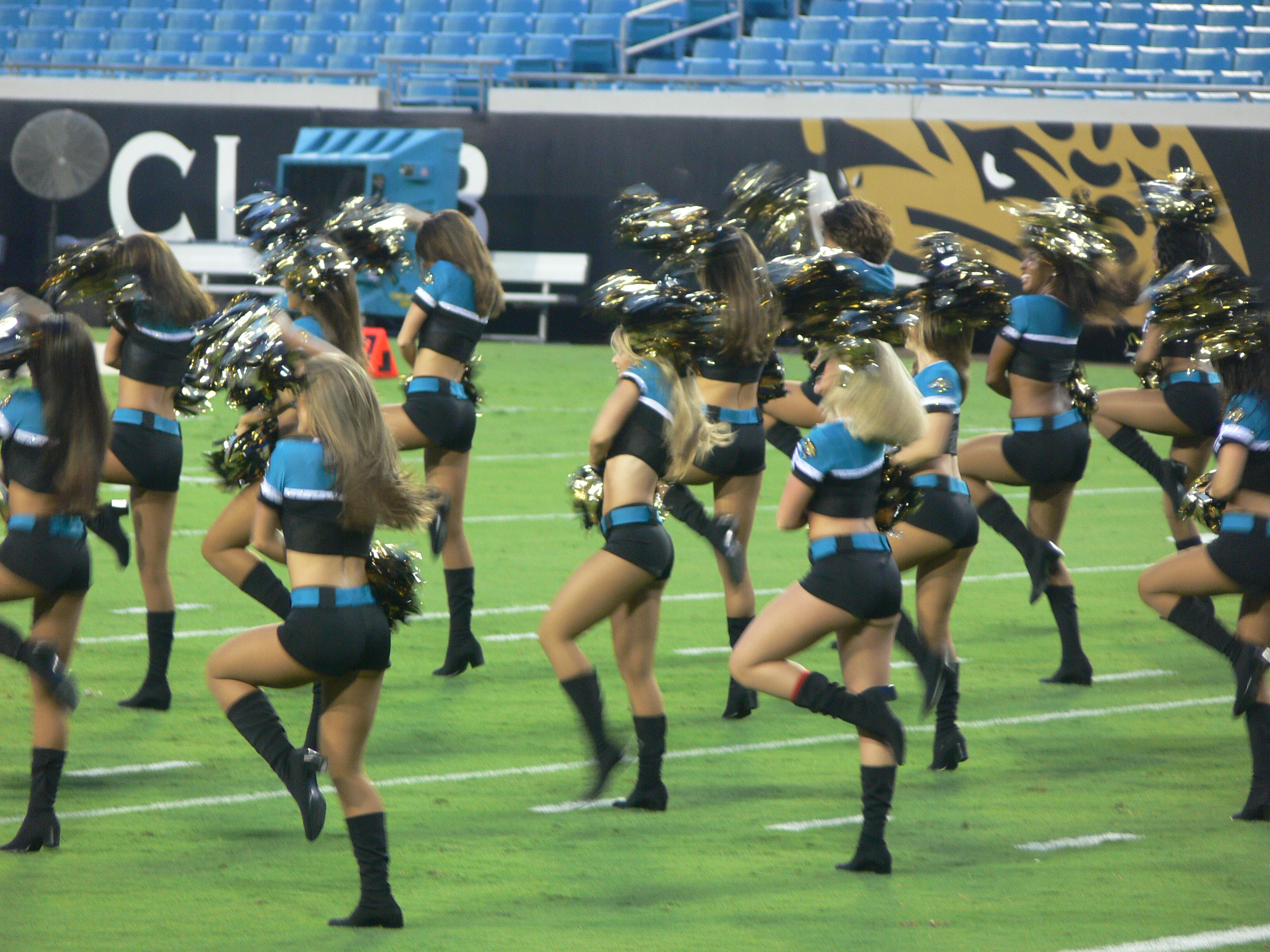 Jacksonville Jaguars Roar Part 1 Jj01 01